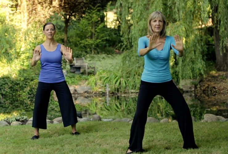 Healing Depression With Qigong And Herbs
